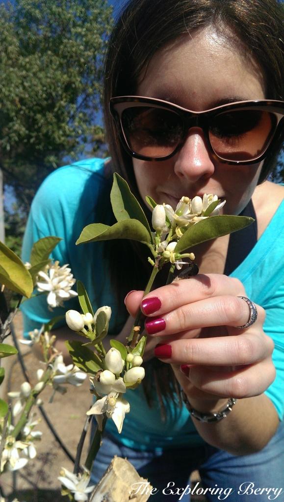 Exploring Berry in the Garden