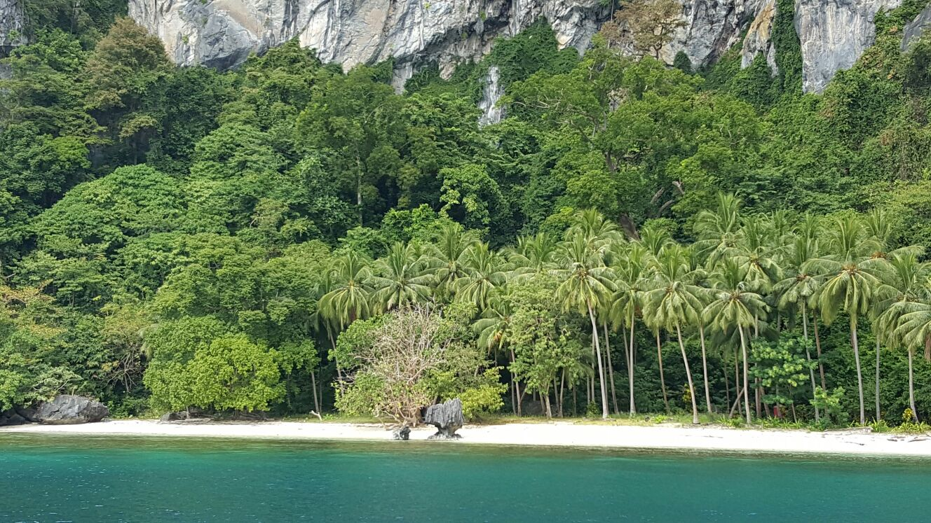 Tropical Beach at El Nido